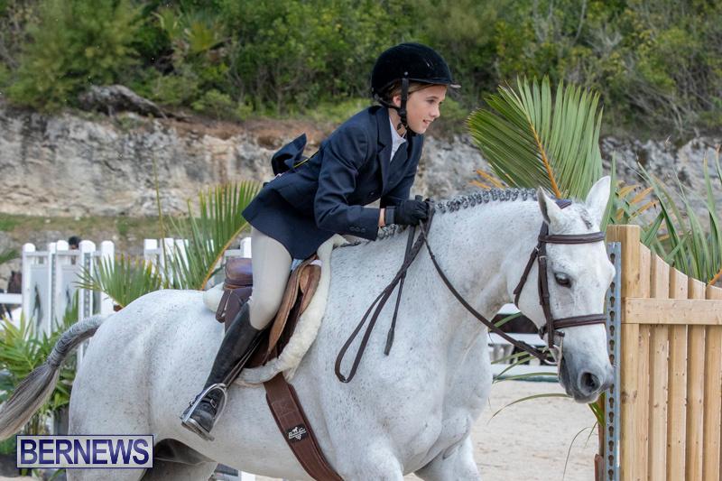 BHPA-Bermuda-Horse-Pony-Association-Spring-Show-March-24-2019-6136