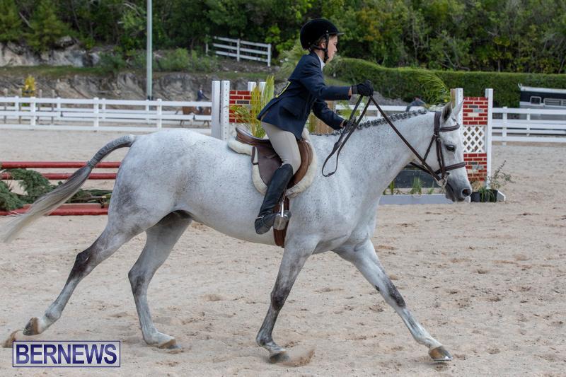 BHPA-Bermuda-Horse-Pony-Association-Spring-Show-March-24-2019-6140