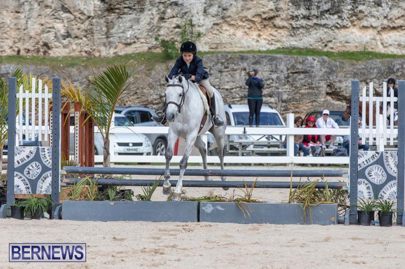 BHPA-Bermuda-Horse-Pony-Association-Spring-Show-March-24-2019-6150