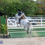 BHPA Bermuda Horse Pony Association Spring Show, March 24 2019-6159
