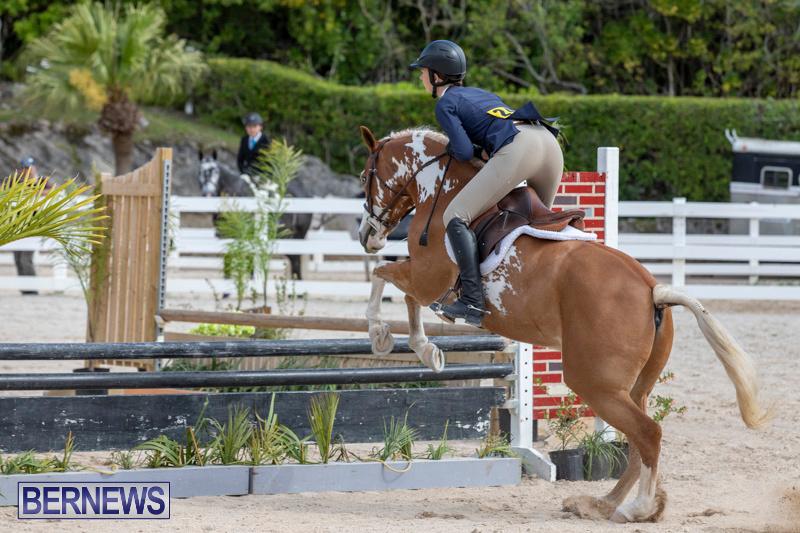 BHPA-Bermuda-Horse-Pony-Association-Spring-Show-March-24-2019-6175
