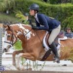 BHPA Bermuda Horse Pony Association Spring Show, March 24 2019-6187
