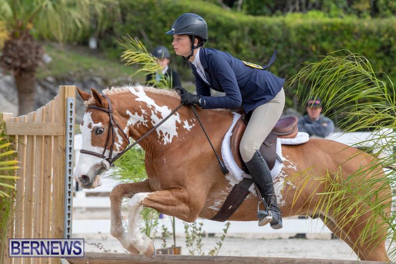 BHPA-Bermuda-Horse-Pony-Association-Spring-Show-March-24-2019-6187