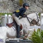 BHPA Bermuda Horse Pony Association Spring Show, March 24 2019-6203