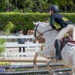 BHPA Bermuda Horse Pony Association Spring Show, March 24 2019-6212