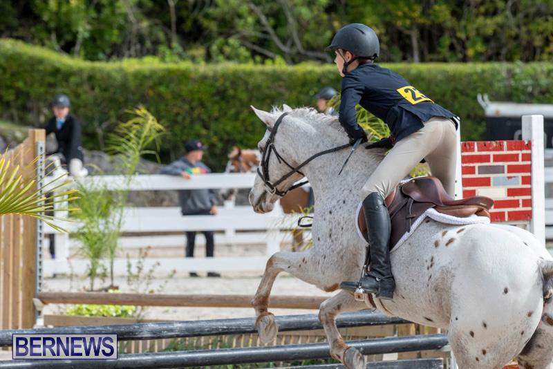 BHPA-Bermuda-Horse-Pony-Association-Spring-Show-March-24-2019-6212