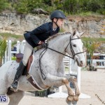 BHPA Bermuda Horse Pony Association Spring Show, March 24 2019-6216