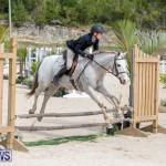BHPA Bermuda Horse Pony Association Spring Show, March 24 2019-6217