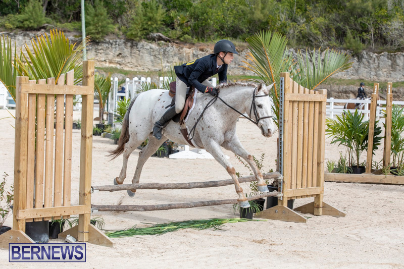 BHPA-Bermuda-Horse-Pony-Association-Spring-Show-March-24-2019-6217