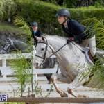 BHPA Bermuda Horse Pony Association Spring Show, March 24 2019-6223