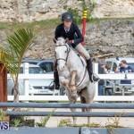 BHPA Bermuda Horse Pony Association Spring Show, March 24 2019-6230