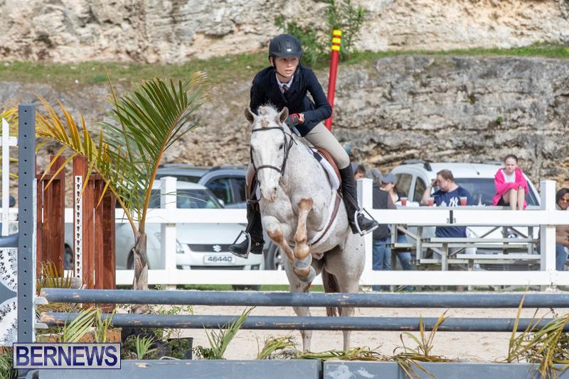 BHPA-Bermuda-Horse-Pony-Association-Spring-Show-March-24-2019-6230