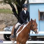 BHPA Bermuda Horse Pony Association Spring Show, March 24 2019-6248