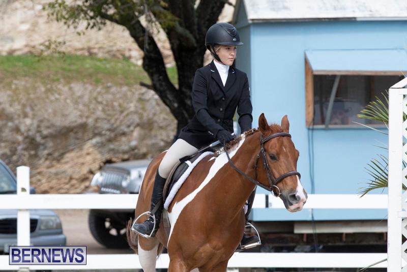 BHPA-Bermuda-Horse-Pony-Association-Spring-Show-March-24-2019-6248