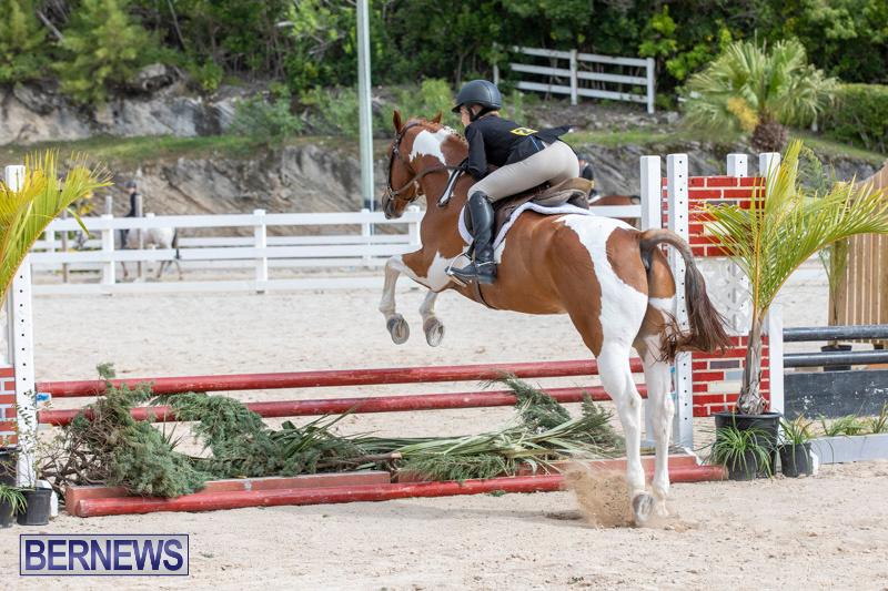 BHPA-Bermuda-Horse-Pony-Association-Spring-Show-March-24-2019-6268