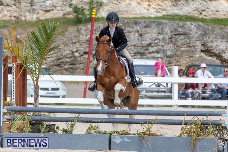 BHPA-Bermuda-Horse-Pony-Association-Spring-Show-March-24-2019-6283