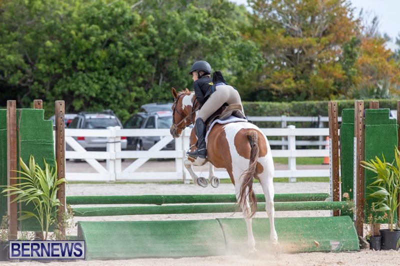 BHPA-Bermuda-Horse-Pony-Association-Spring-Show-March-24-2019-6295