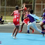BNA Youth & Senior Netball Bermuda March 9 2019 (12)