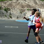 BNA Youth & Senior Netball Bermuda March 9 2019 (15)
