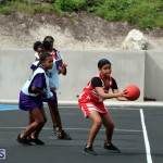 BNA Youth & Senior Netball Bermuda March 9 2019 (19)