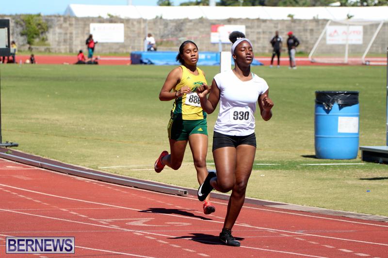 BNAA-Track-Meet-Bermuda-March-16-2019-16