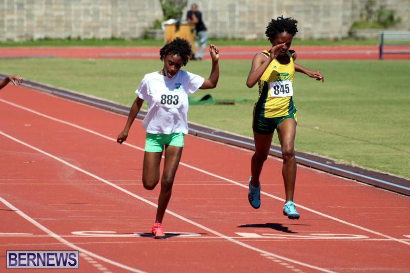 BNAA-Track-Meet-Bermuda-March-16-2019-19