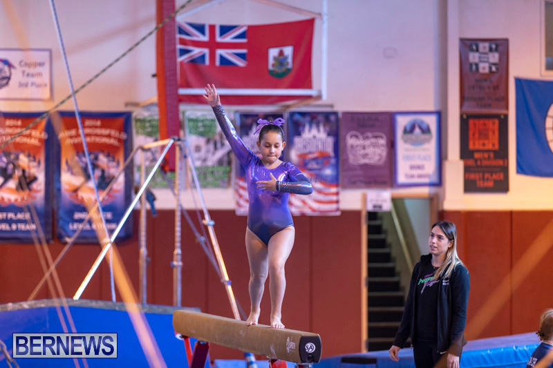 Bermuda-International-Gymnastics-Challenge-March-16-2019-0449