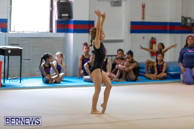 Bermuda-International-Gymnastics-Challenge-March-16-2019-0474