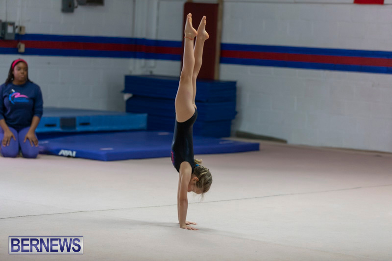 Bermuda-International-Gymnastics-Challenge-March-16-2019-0477