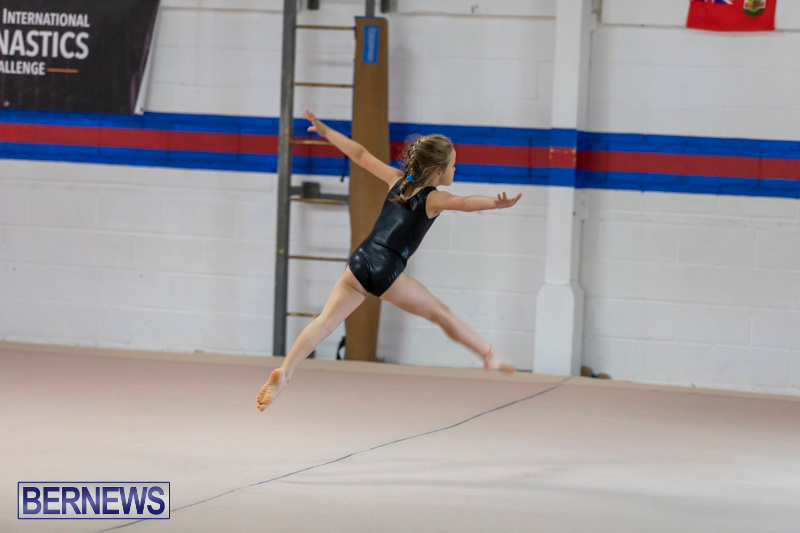 Bermuda-International-Gymnastics-Challenge-March-16-2019-0478