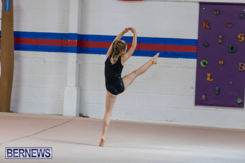 Bermuda-International-Gymnastics-Challenge-March-16-2019-0480