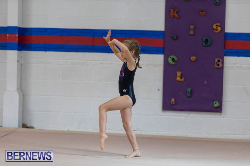 Bermuda-International-Gymnastics-Challenge-March-16-2019-0483