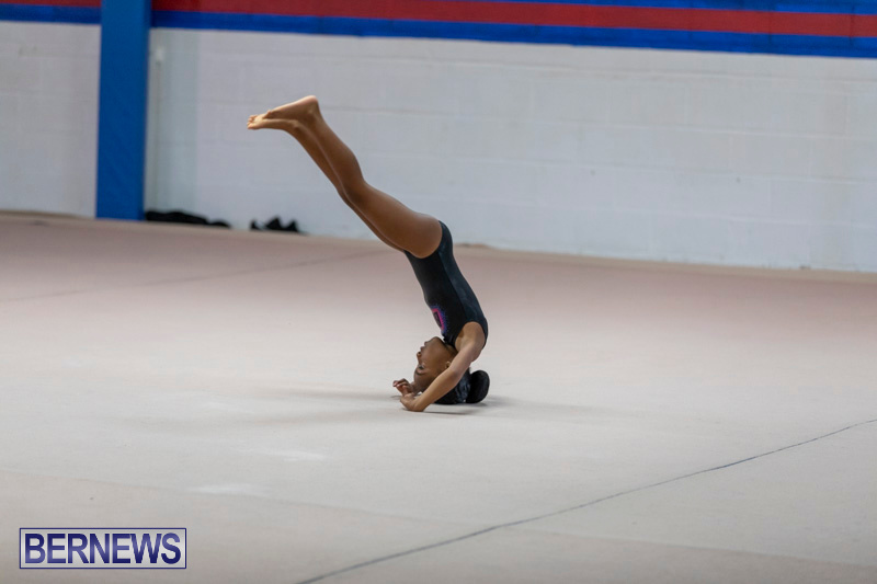 Bermuda-International-Gymnastics-Challenge-March-16-2019-0505