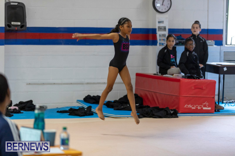 Bermuda-International-Gymnastics-Challenge-March-16-2019-0527