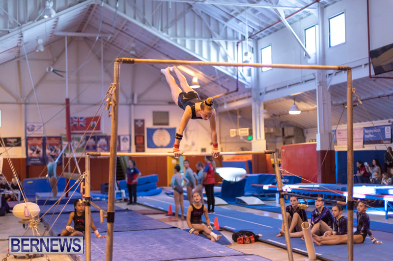 Bermuda-International-Gymnastics-Challenge-March-16-2019-1307