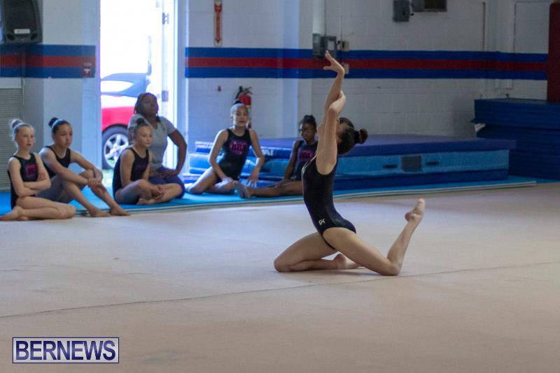 Bermuda-International-Gymnastics-Challenge-March-16-2019-1365