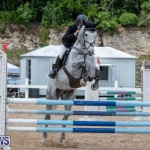 FEI Jumping World Challenge 2019 Competition 2 and BEF Support Show Bermuda, March 2 2019-1009