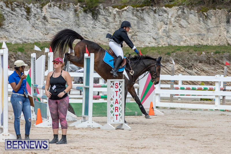 FEI-Jumping-World-Challenge-2019-Competition-2-and-BEF-Support-Show-Bermuda-March-2-2019-1029