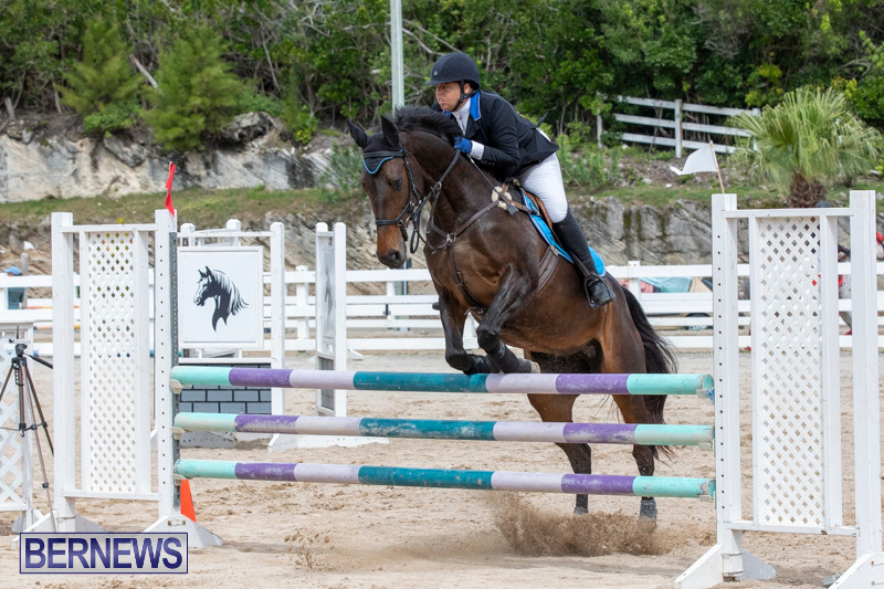 FEI-Jumping-World-Challenge-2019-Competition-2-and-BEF-Support-Show-Bermuda-March-2-2019-1033