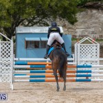 FEI Jumping World Challenge 2019 Competition 2 and BEF Support Show Bermuda, March 2 2019-1038