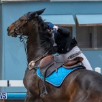 FEI Jumping World Challenge 2019 Competition 2 and BEF Support Show Bermuda, March 2 2019-1040