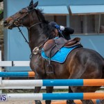 FEI Jumping World Challenge 2019 Competition 2 and BEF Support Show Bermuda, March 2 2019-1041