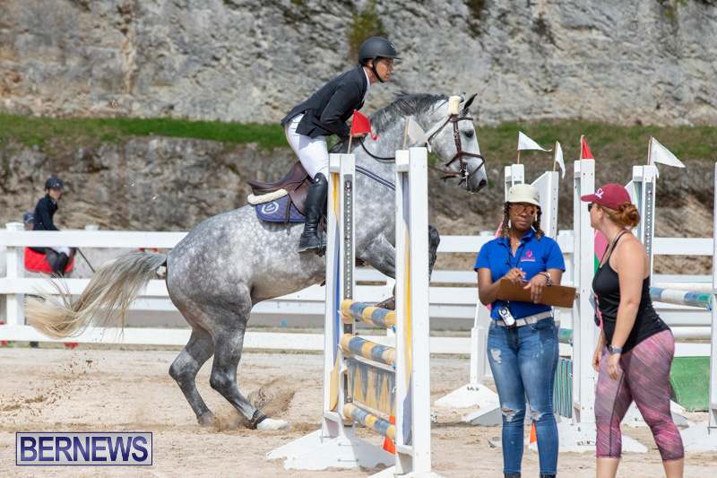 FEI-Jumping-World-Challenge-2019-Competition-2-and-BEF-Support-Show-Bermuda-March-2-2019-1071