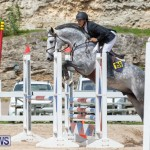 FEI Jumping World Challenge 2019 Competition 2 and BEF Support Show Bermuda, March 2 2019-1085