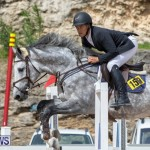 FEI Jumping World Challenge 2019 Competition 2 and BEF Support Show Bermuda, March 2 2019-1086