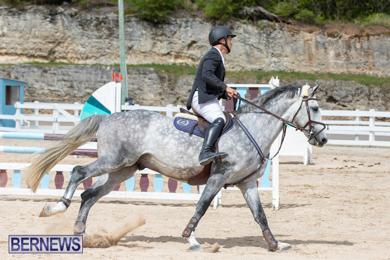 FEI-Jumping-World-Challenge-2019-Competition-2-and-BEF-Support-Show-Bermuda-March-2-2019-1091