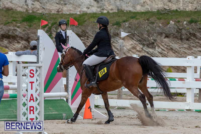FEI-Jumping-World-Challenge-2019-Competition-2-and-BEF-Support-Show-Bermuda-March-2-2019-1151