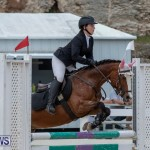 FEI Jumping World Challenge 2019 Competition 2 and BEF Support Show Bermuda, March 2 2019-1157