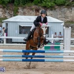 FEI Jumping World Challenge 2019 Competition 2 and BEF Support Show Bermuda, March 2 2019-1178