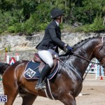 FEI Jumping World Challenge Competition 3 Bermuda, March 9 2019-0020